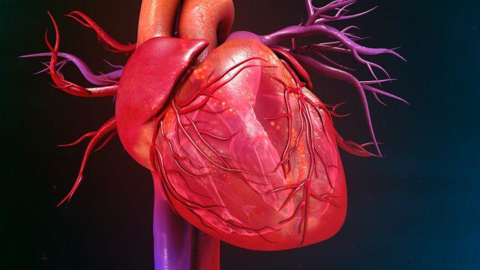 Tempat Pengobatan Jantung Lemah di Depok Terbaik dan Tanpa Operasi