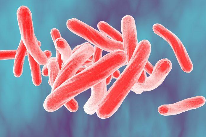 Tempat Pengobatan TBC di Tangerang dan Palembang Paling Aman dan Nyaman